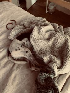 Convalescing, resting